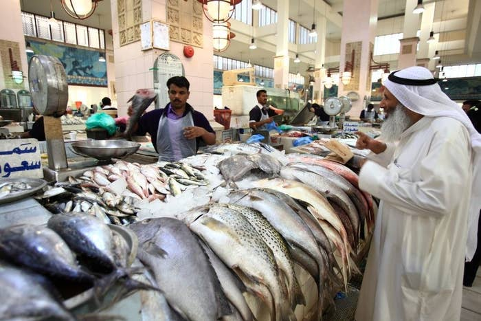 ペルシャ湾に面したクウェートは、エビや魚などの海産物が豊かだ。ニンニクや各種スパイスを効かせたグリルやフライをはじめ、様々な料理がある。7月にもクギを混入した重量水増しがクウェート国営通信などによると、同国では2018年7月にも、魚のおなかに釘を入れて重量を増やしたとして、魚屋が商工省に摘発された。この時も、魚を買って調理しようとした人が気づいて映像に撮り、ネットにアップしたことで、商工省が調査に動いたという。