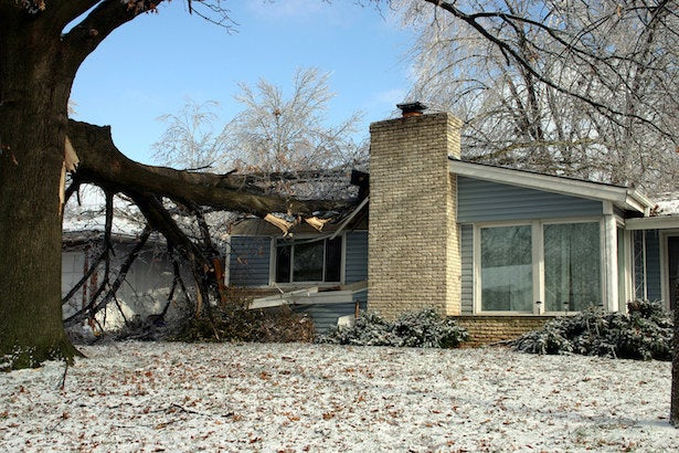A toppled tree or even just a heavy branch can cause severe damage to your home and any people or pets nearby. Be sure to prune trees (except during fall or when they are wet) to keep the weight evenly distributed, and examine the trees for cracks, awkward leaning, exposed roots, or irregularly browning leaves, which may be symptoms of illness or instability.