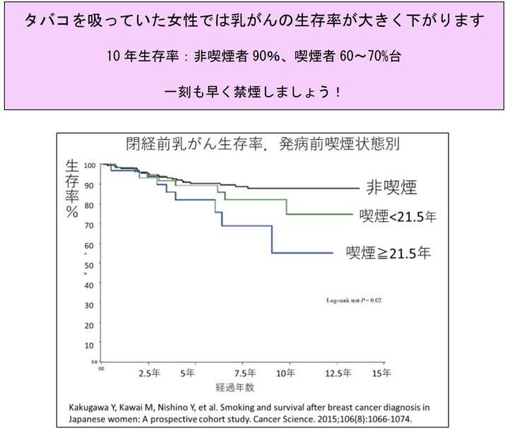 パンフレットでは発病前に喫煙していた人ほど閉経前に乳がんになった場合の生存率が下がることを示す研究のグラフも掲載する