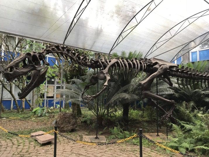 Réplica T-Rex