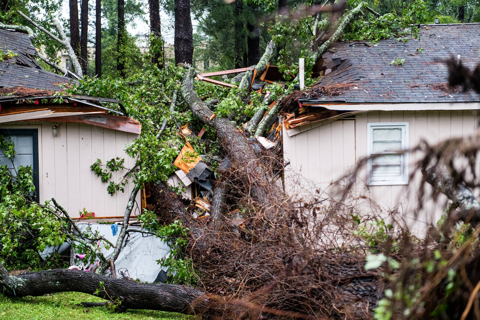 A fallen tree rests on a house after remnants of Hurricane Michael passed through Columbia, South Carolina. The accident sent at least one person to the hospital.
