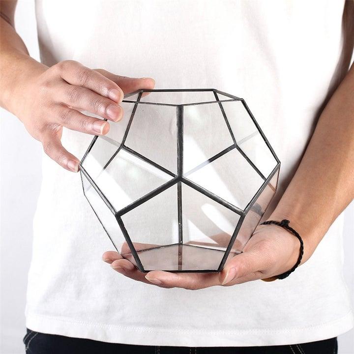 Model holding terrarium container
