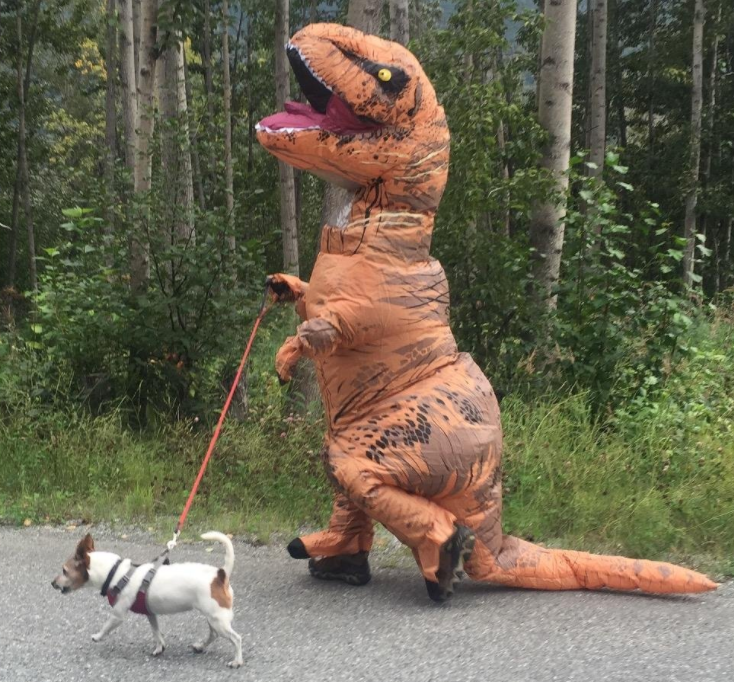 Reviwer wearing the dinosaur costume while walking dog