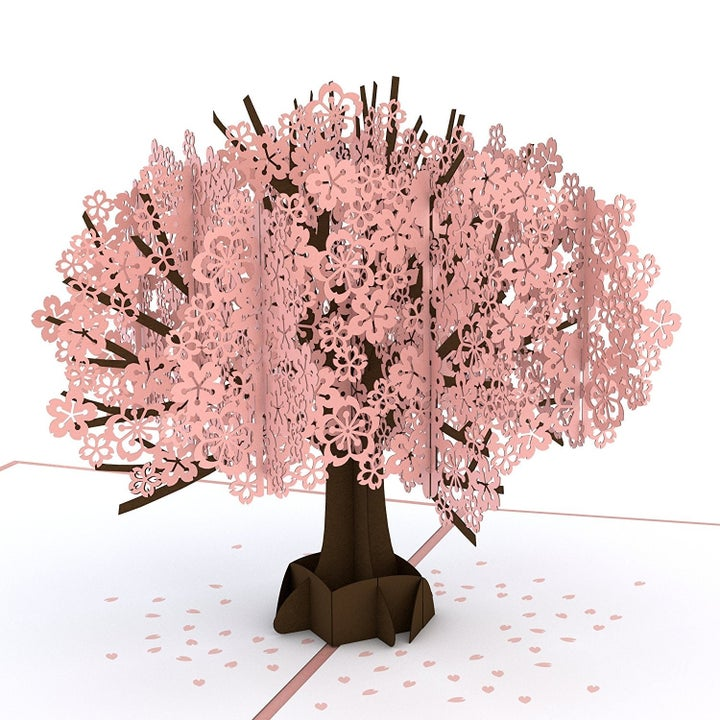 pop-up all-pink blooming cherry tree card