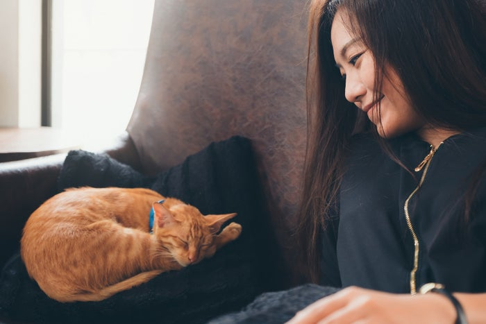 """There is A LOT happening in your brain when you give your pet a nice scratch behind the ears, y'all. One study showed a significant decrease in stress-related hormones, like cortisol, after participants pet a friendly and familiar dog — an automatic response that didn't require any conscious effort on the participants' part. Not only that, those psychological changes happened even faster (after only five to 24 minutes of interacting with a dog!) than the result of taking most stress-relieving drugs. Oh, and research has also found that when a person stares into the eyes of their pet, oxytocin — a hormone referred to as the """"cuddle chemical"""" or """"love hormone"""" that makes you feel happy and trusting — is released in their body."""