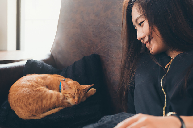 7 Ways Your Pets Are Actually Keeping You Healthy
