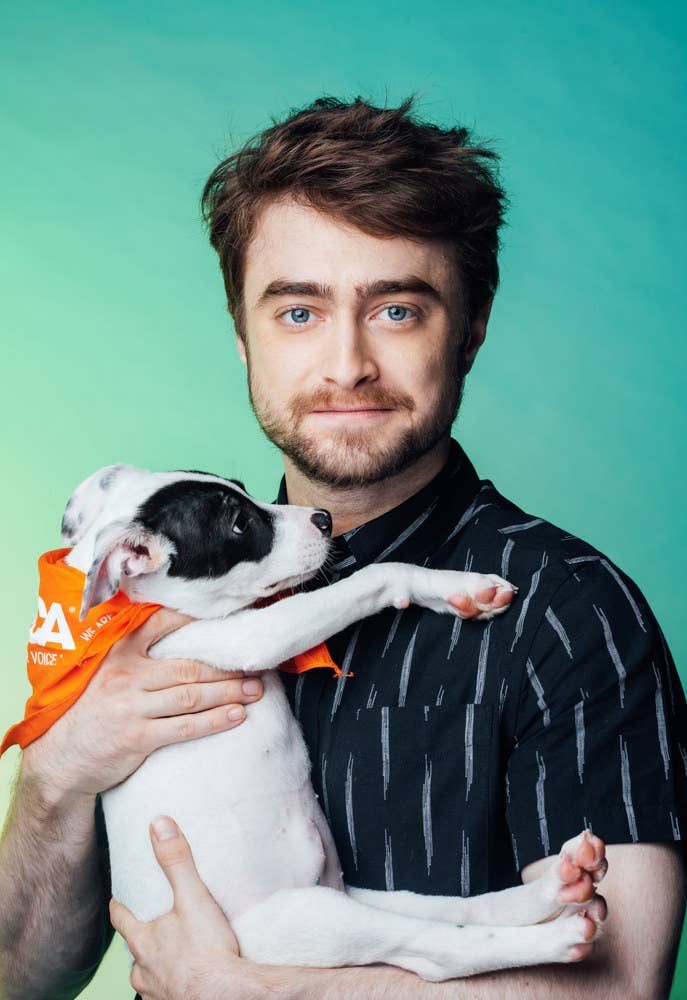 Daniel Radcliffe Revealed Which