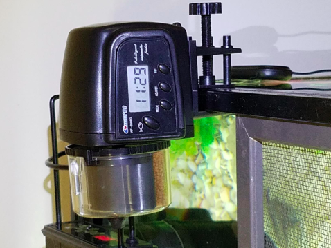 reviewer pic of the fish food dispenser on an aquarium
