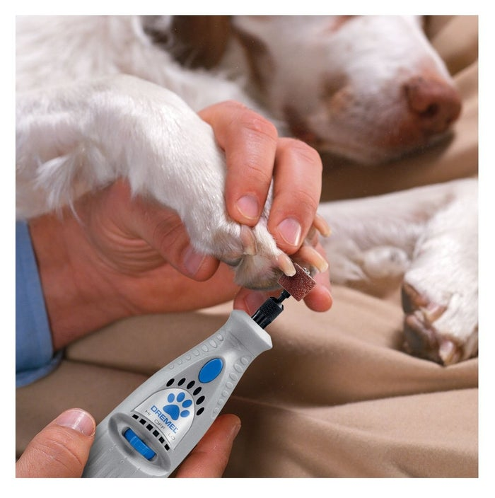 The Dremel 7300 is a rotary tool that files your dog's nails rather than clipping them and risking hitting the quick. It's a safe alternative that both doggies and owners find less stressful.The tool is operated by a rechargeable 4.8-volt battery, *but* the charger is sold separately. You can get one for $12.99.