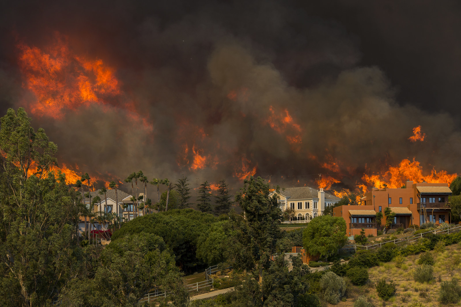 As Flames Licked Dangerously Close To Their Homes, Some Malibu Residents Refused To Leave