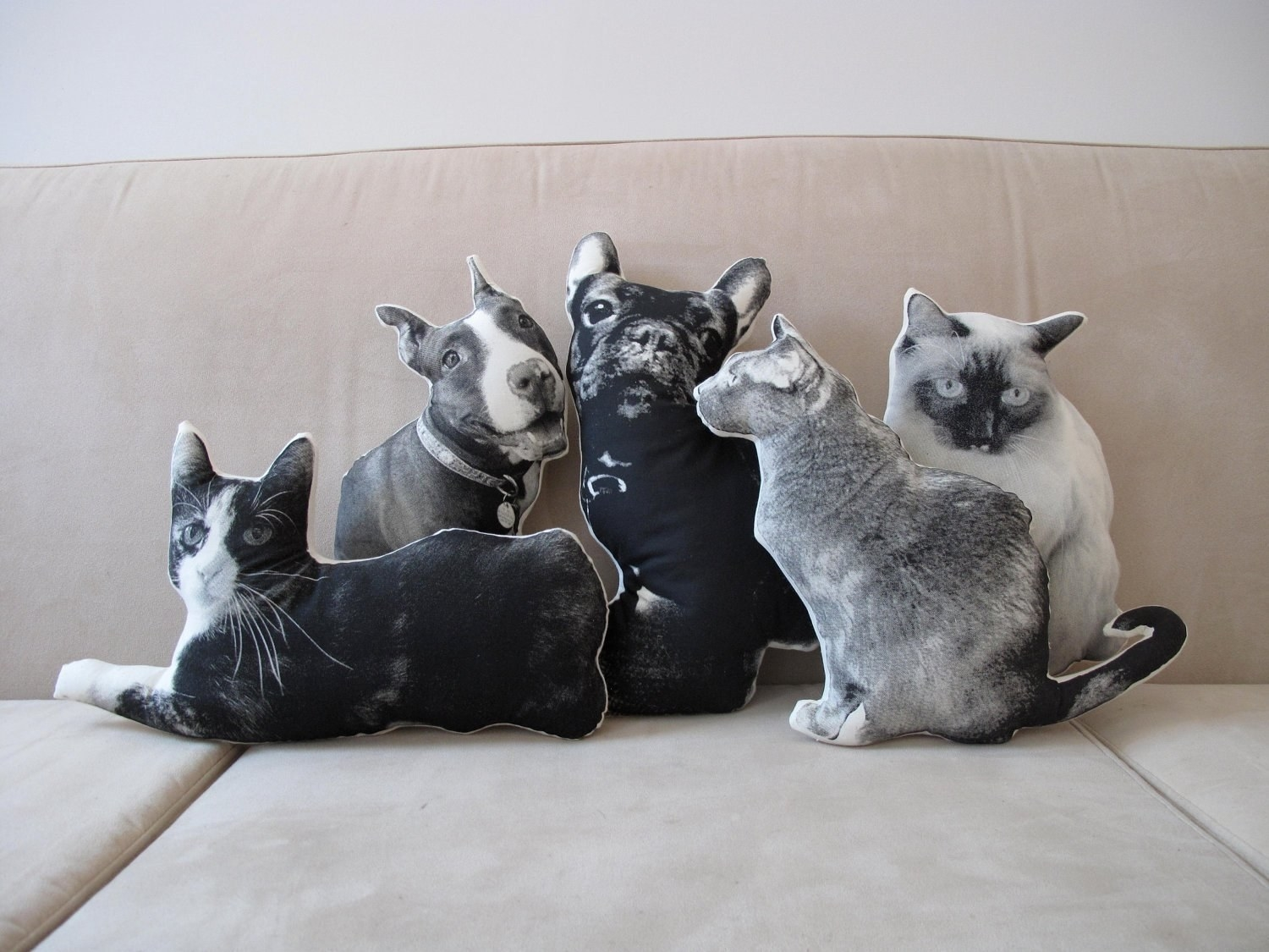Five pillows of cats and dogs sitting on a couch