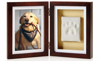 a double picture frame with a dog photo on one half and a paw print on the other