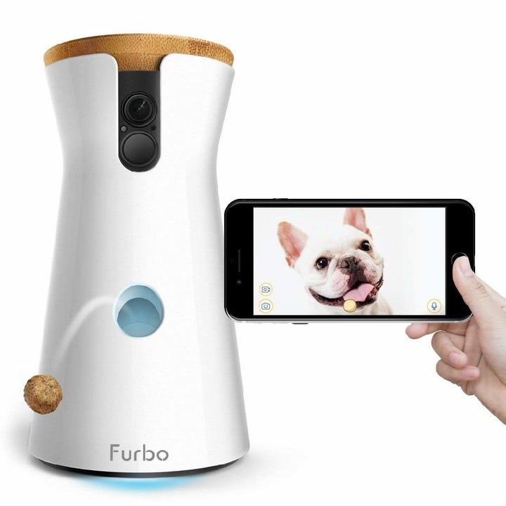 The tall camera in white with a treat coming out of it and a phone, showing a picture of a dog