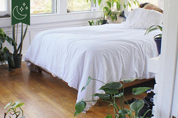 11 Plants That Might Help You Get A Better Night S Sleep
