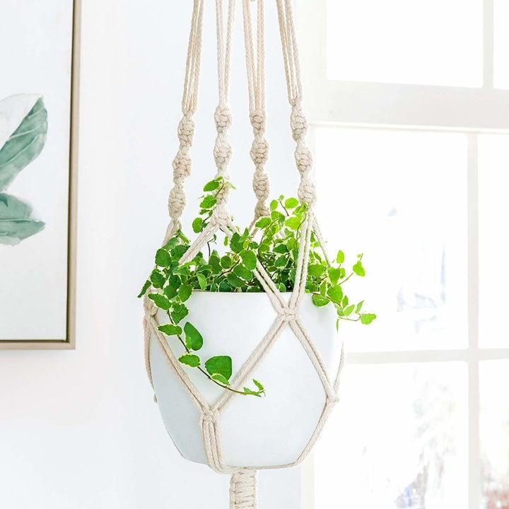 taupe rope plant hanger holding plant in white pot