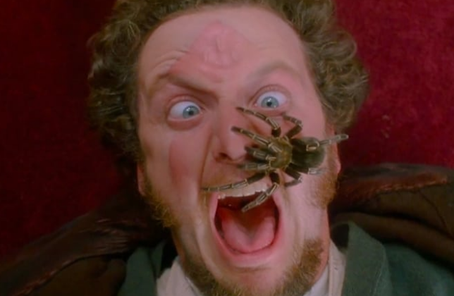 "Also, there's a rumor that Daniel Stern mimed his scream during the scene, but that's not actually true! While prepping for the scene, the animal trainer on set said, ""Just don't make any sudden, threatening moves, and you'll be fine."" Daniel responded, ""But I'm going to be screaming in Barry's face. Do you think he'll feel threatened by that?!"" The animal trainer simply said, ""Barry doesn't have ears. He can't hear. Relax.""—ashleyl31"