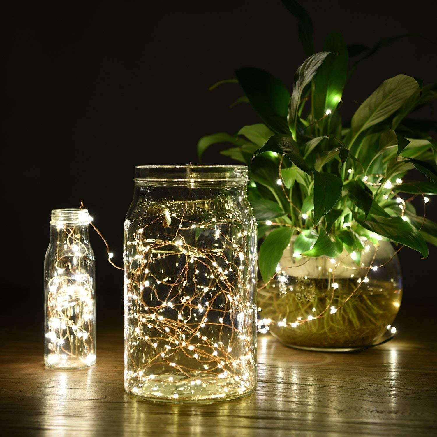 Jars and a plant glowing with the lights