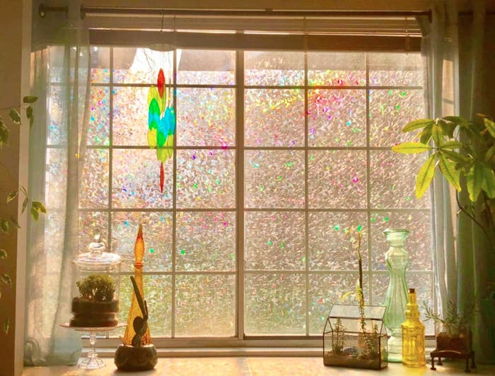 Reviewer light shining through reviewer's translucent rainbow film window; the coating on the film makes the window shine with different muted colors