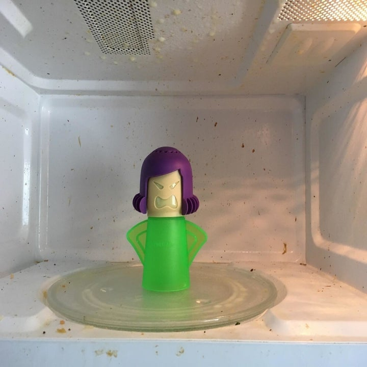 The cleaner in a dirty microwave
