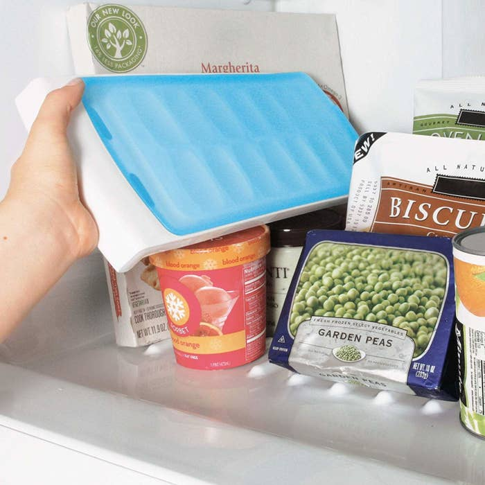 Hand placing sealed ice cube tray into freezer