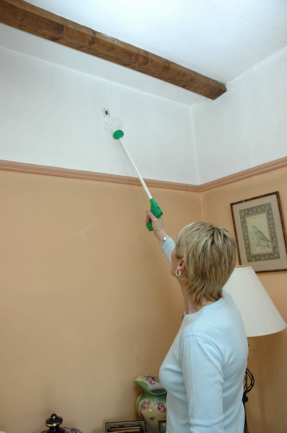 A model using the long tool with a trigger on one end and soft bristles on the other to catch a spider  close to the ceiling
