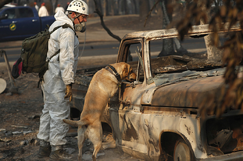 After California's Worst Wildfire, Rain May Wash Away Ash, Smoke, And Victim Remains