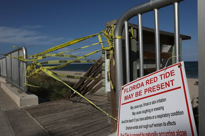 A Florida beach closed due to red tide.