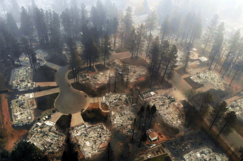 Thinning Forests Won't Stop California's Most Deadly And Destructive Wildfires