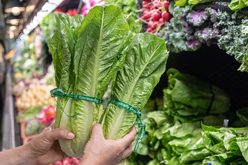 The CDC Says Romaine Lettuce Is Not Safe To Eat Due To A New E. Coli Outbreak