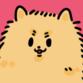 Misato Nagoya profile picture