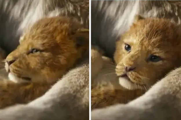 Disney Releases First Live Action Trailer For Uping The Lion King