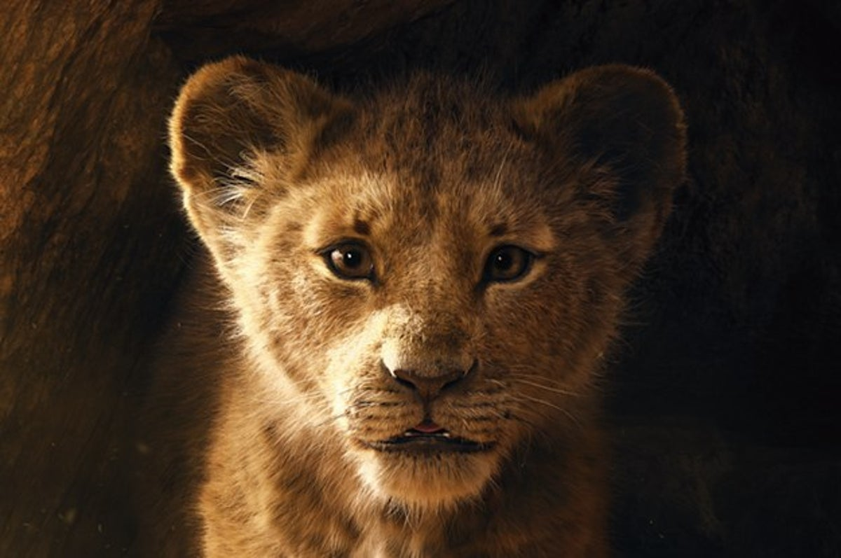 The Teaser For Disney S The Lion King Is Finally Out