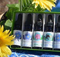 These potions can help you through job transitions, surgeries, and all kinds of other major life events. They also come with gorgeous postcards, and the company has the sweetest team of employees. Email them a description of all your problems, and ask for Molly. She'll consult with her team of angels and guides on your behalf to figure out exactly which flower essences you need.Get your custom mix for $55 from Green Hope Farm.