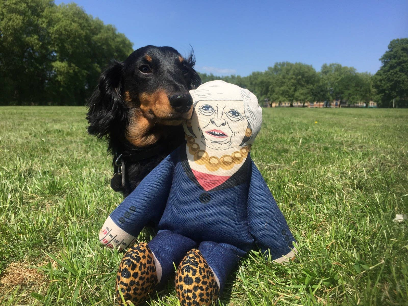 Pet Hates Toys made a series of dog toys in the image of leading British politicians. As well as Prime Minster May, you can also purchase a Jeremy Corbyn and Boris Johnson toy.