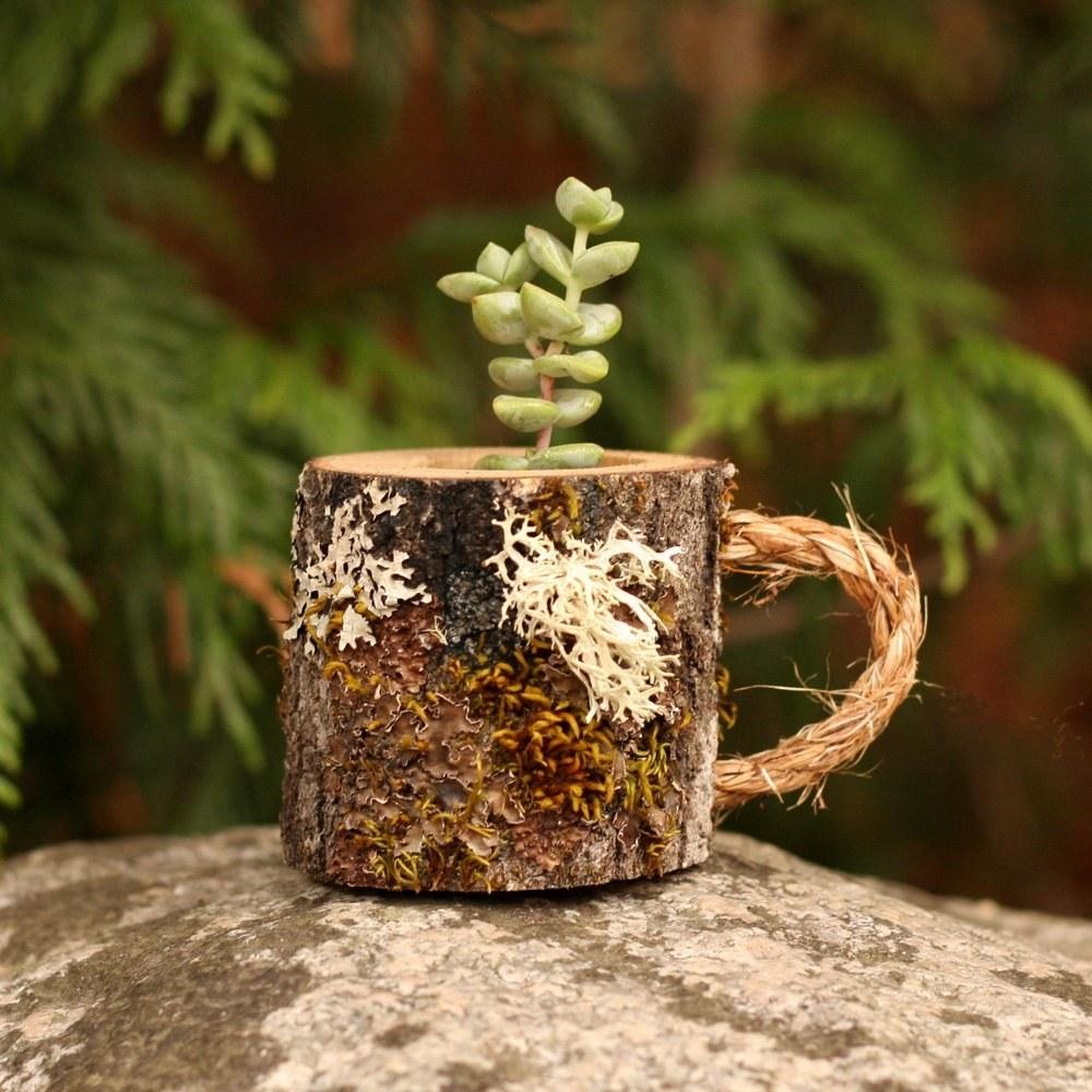 coffee mug shaped succulent planter