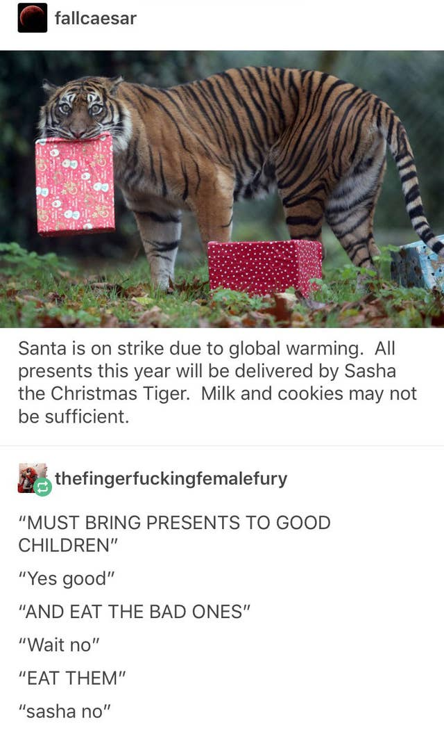 Tumblr Posts About Christmas To Keep You Busy Until December
