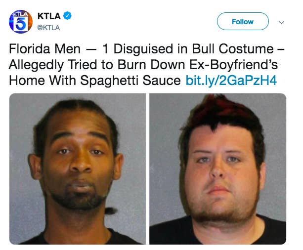 The image result for The Florida Man