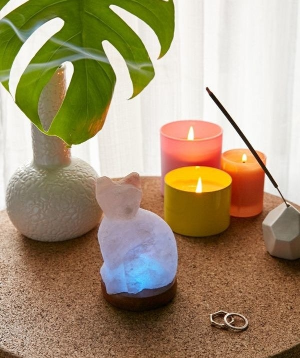Get it from Urban Outfitters for $29 or get a traditional salt lamp from Amazon for $16.99.