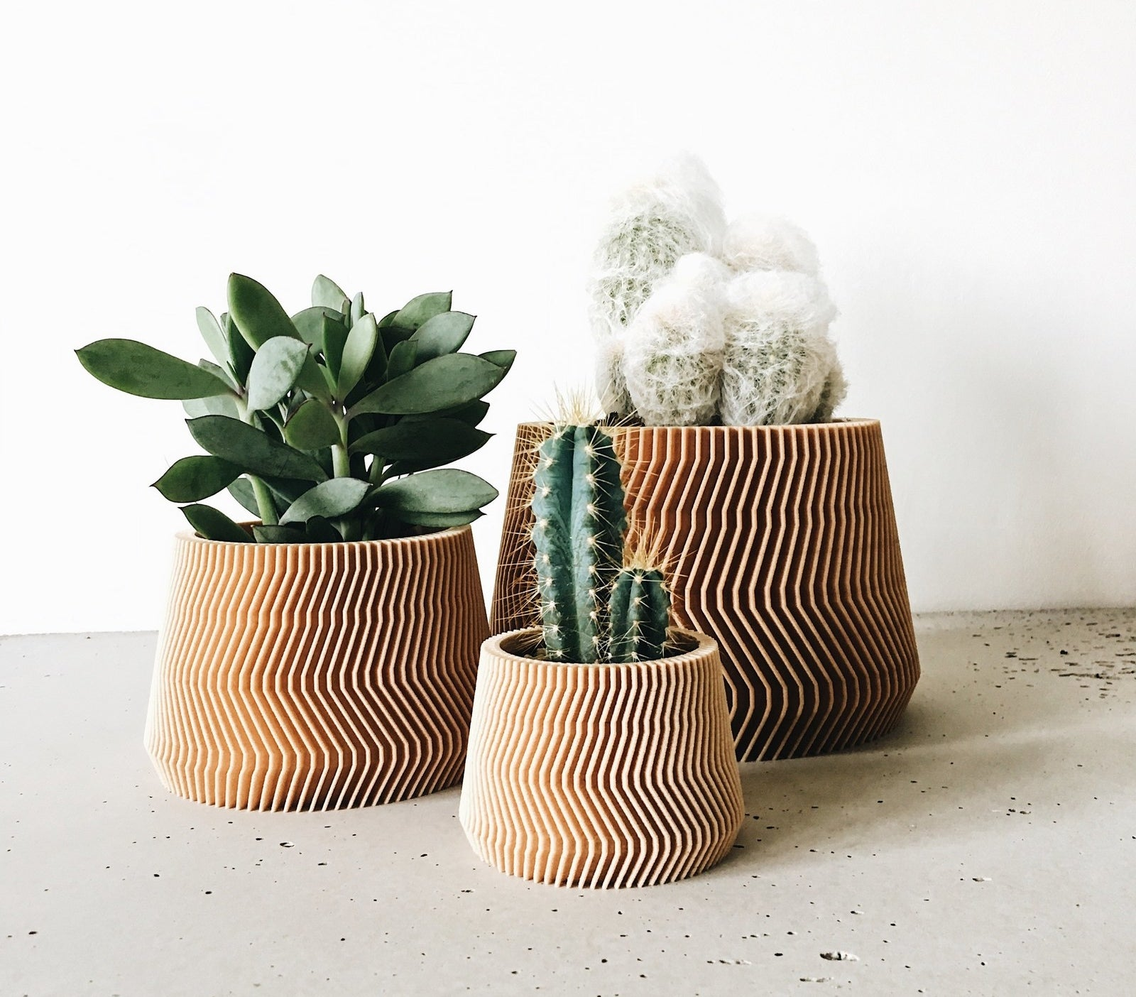 Wavy recycled-wood planters with succulents