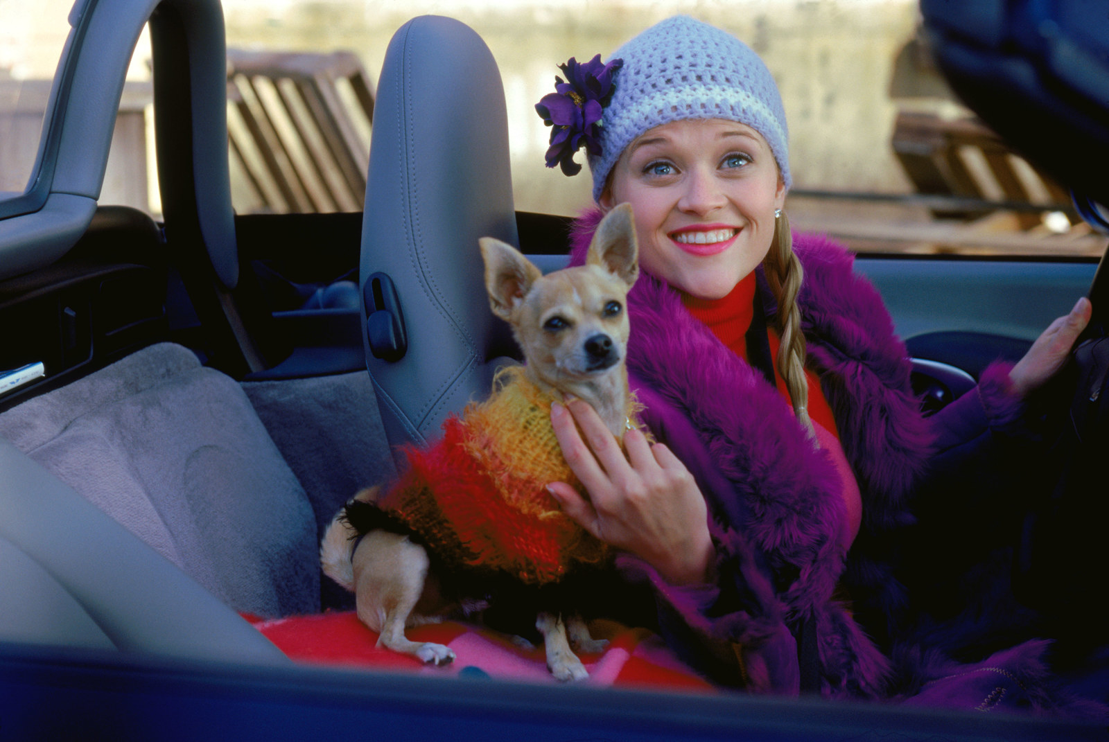 Elle with her dog Bruiser in Legally Blonde.