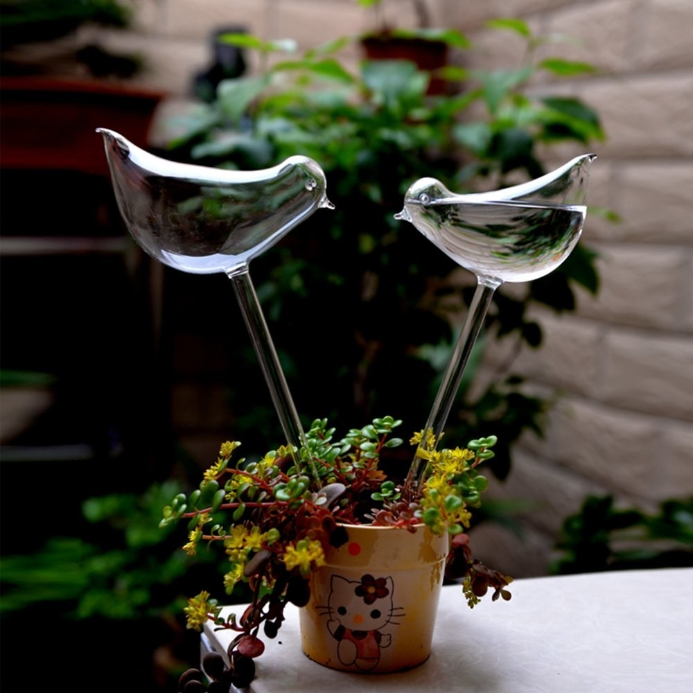 Two glass bird-looking bulbs filled with water inserted into a container plant