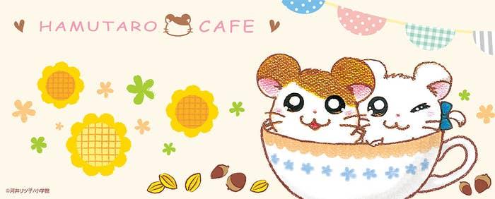 来年の1月、東京と埼玉に「ハム太郎カフェ」が期間限定でオープンします!ハムちゃんずそれぞれの個性を生かしたメニューや、ほっこり可愛いメニューがいっぱい!正直「メニュー考えた人天才か?」と思うくらい可愛かったので、メニューをご紹介します!