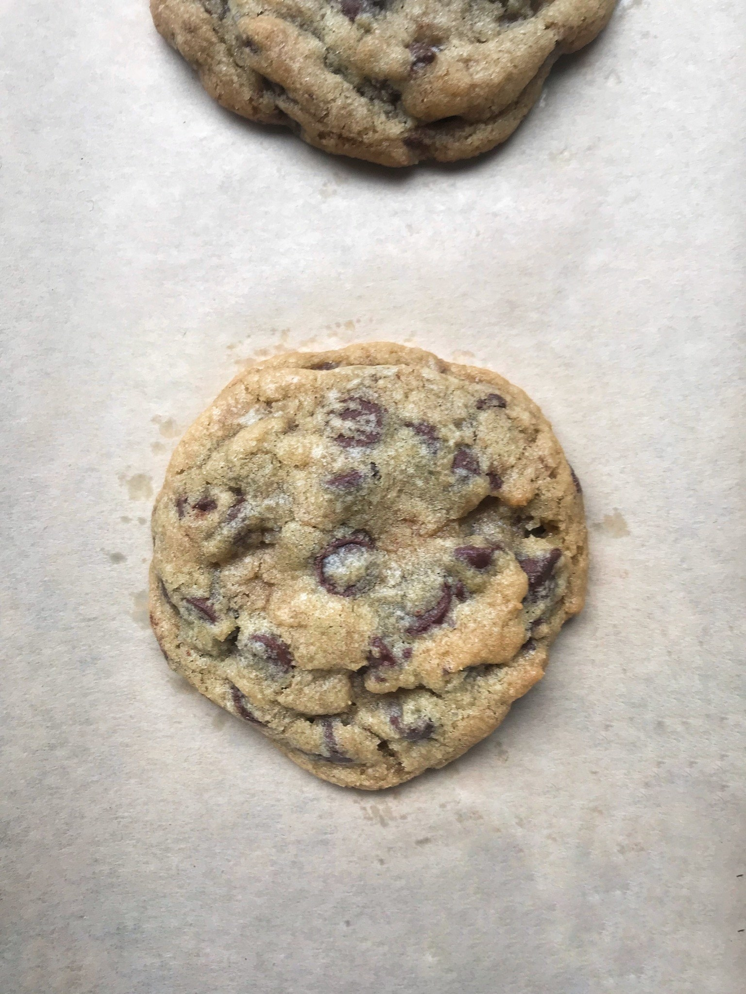 Fantastic I Tested Famous Chocolate Chip Cookie Recipes To Find The Download Free Architecture Designs Lukepmadebymaigaardcom