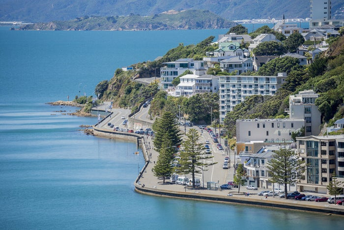 With a booming start-up scene, friendly people, and chill vibes, New Zealand's capital is capturing hearts of tourists. Make sure you hike the Wellington town belt up to the summit of Mount Victoria. Here are 25 Reasons Why You Should Move To Wellington