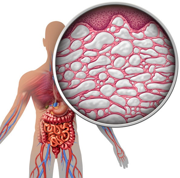 Did you know that layers of the body previously thought to be connective tissue might actually be its own organ responsible for moving fluid throughout your body? The newly discovered organ is one of the largest in the body and has implications about everything from the ways cancer might spread to the effectiveness of acupuncture.