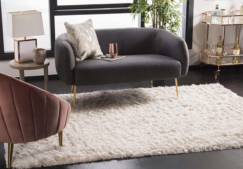 The shag rug in a livingroom