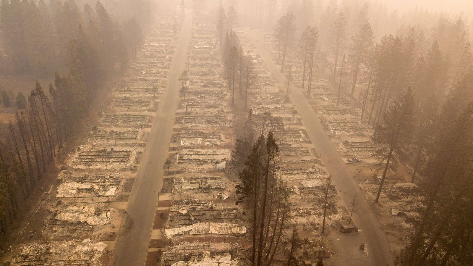 A burned neighborhood in Paradise, California, as a result of the Camp fire, Nov. 15.