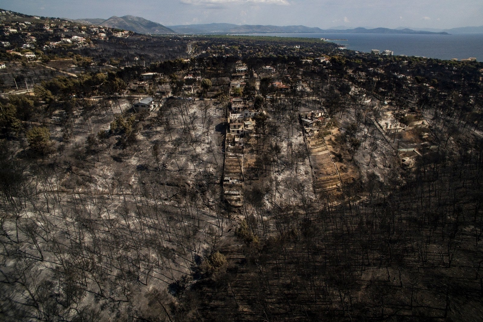 A scorched area following a wildfire in the Greek village of Mati, July 26.
