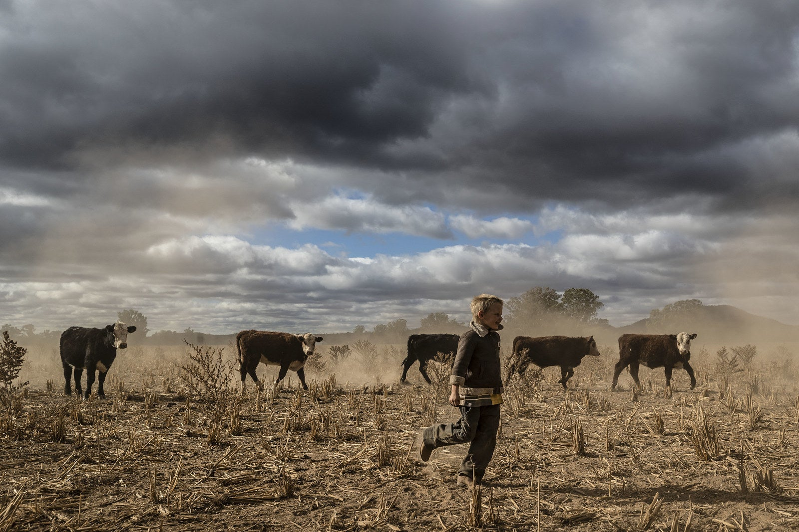 Harry Taylor, 6, plays on the dust bowl his family farm has become during the drought on June 17 in Coonabarabran, New South Wales, Australia.