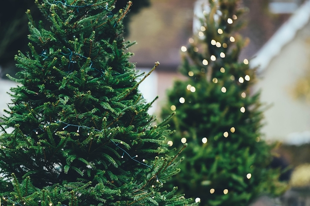 Image result for christmas tree plastic